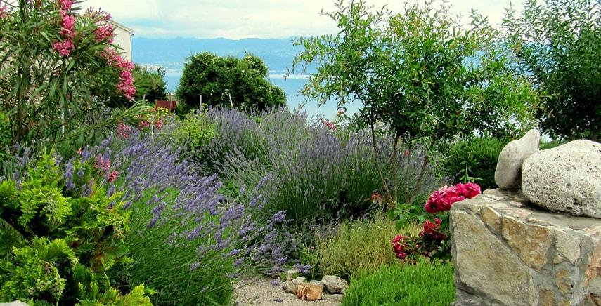 arredamento giardino flora autoctnona