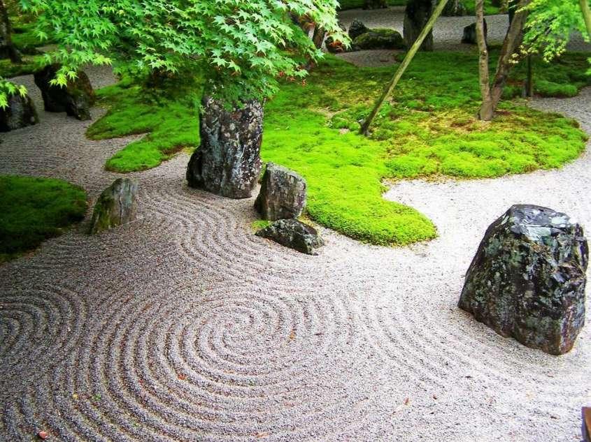 piante zen giardino