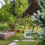 Giardino rustico e giardini di campagna: come progettarli, idee e costi