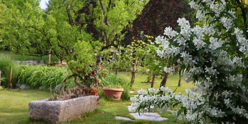 giardino rustico giardino campagna