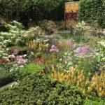 Piante da giardino: quali scegliere, idee e consigli PRATICI