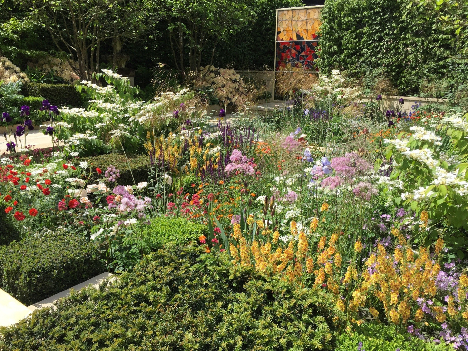 Alberi Ad Alto Fusto Quali Sono piante da giardino: quali scegliere, idee e consigli pratici