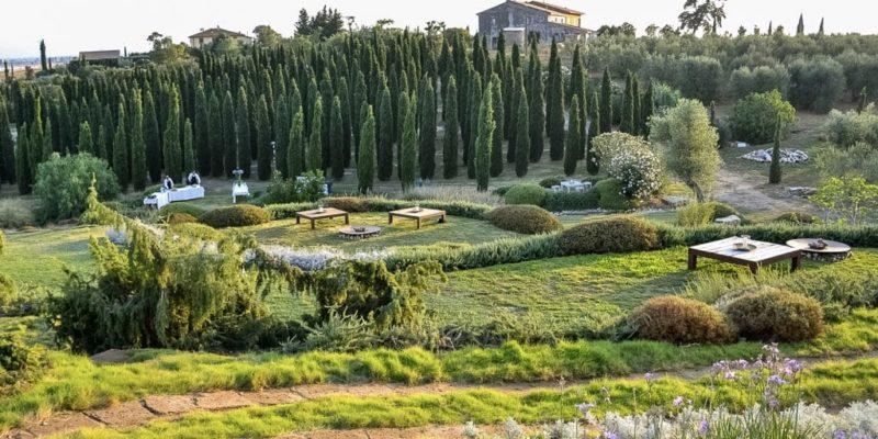 progettazione giardini asciutti