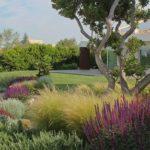 Ristrutturare giardino: costi e consigli per rifacimento giardino
