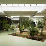 Ufficio green: come realizzare un ufficio sostenibile