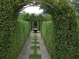 Tunnel in un giardino all'italiana