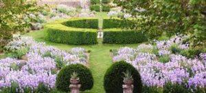 colori del giardino provenzale