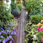 Giardino sul balcone: come realizzarlo