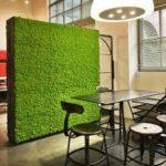 Muschio da parete: idea green per arredare la tua casa