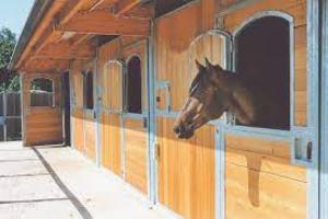 Cavallo all'interno di una scuderia in legno