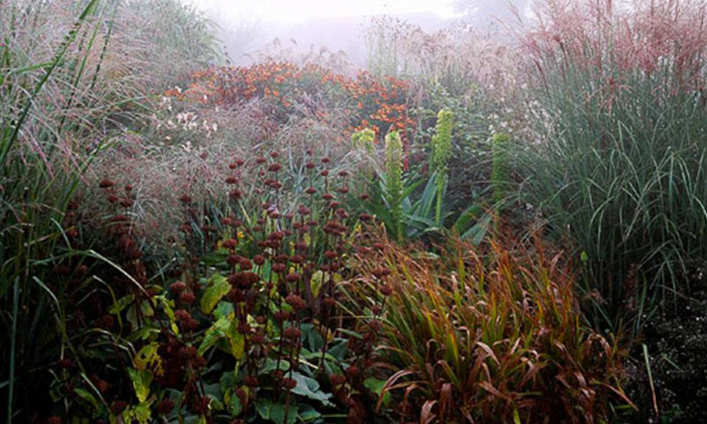Giardino invernale cos 39 e realizzazione planeta srl for Giardino invernale