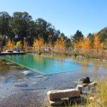 Come convertire la piscina in biopiscina? Una scelta di benessere più semplice di quanto si pensi