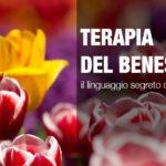Fitoterapia : Il linguaggio segreto dei fiori