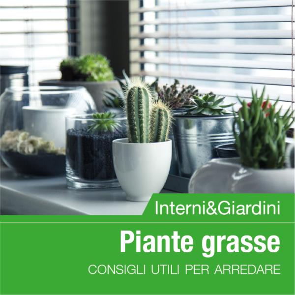 planeta_interniegiardini_piantegrasse