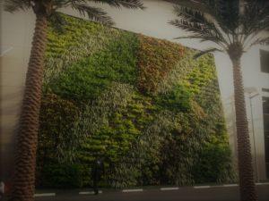 Giardini verticali esterni