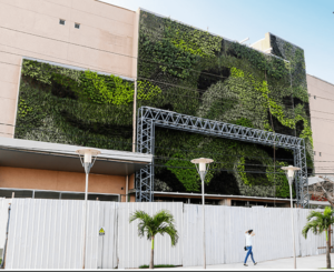 Giardino verticale esterno condominiale