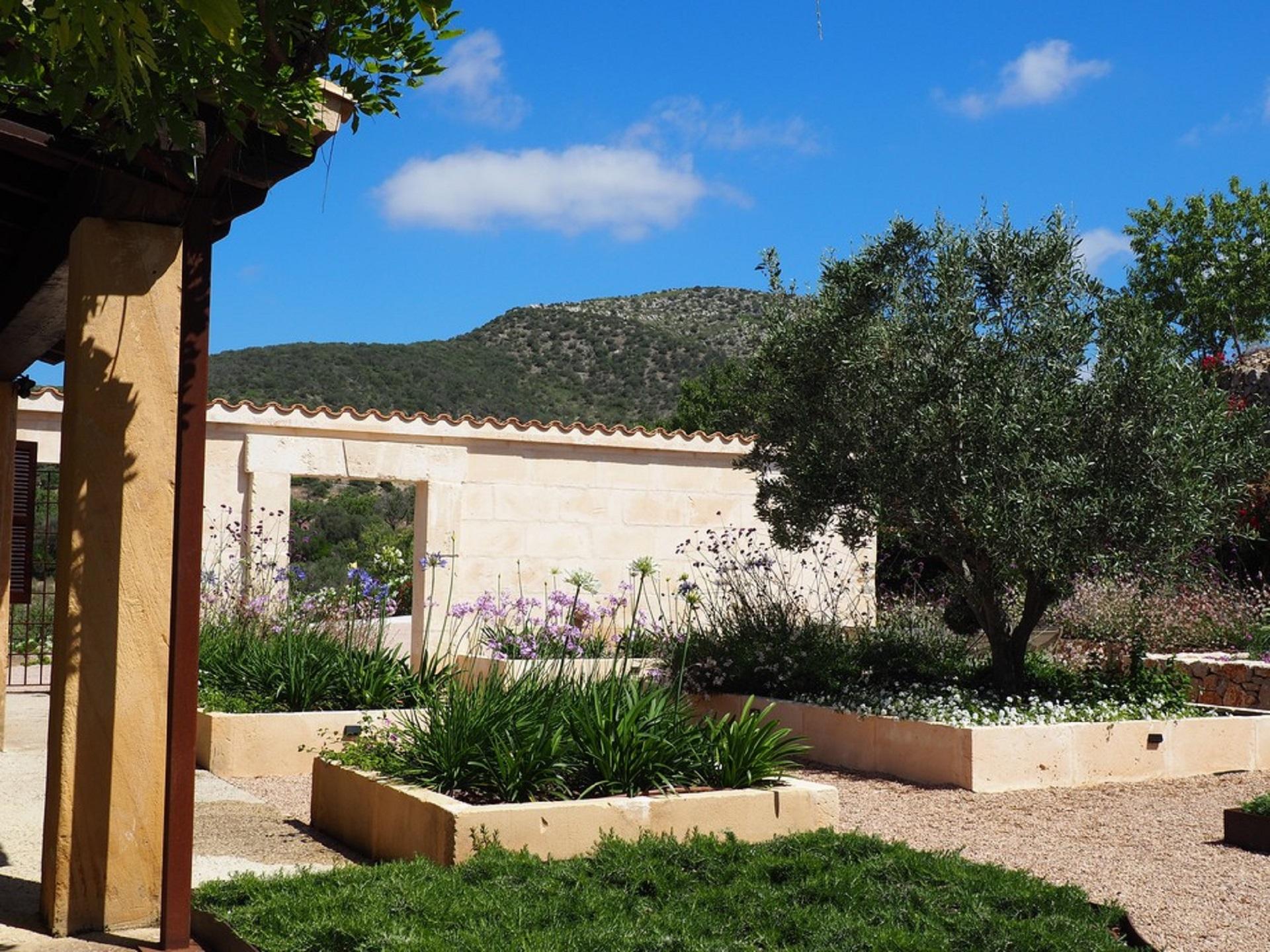 Esempio di progettazione giardino mediterraneo i - Progetto giardino mediterraneo ...