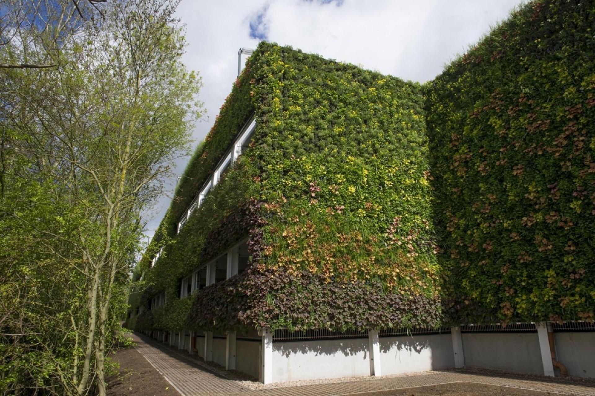 Esempio di giardino verticale esterno per edificio i for Giardino verticale