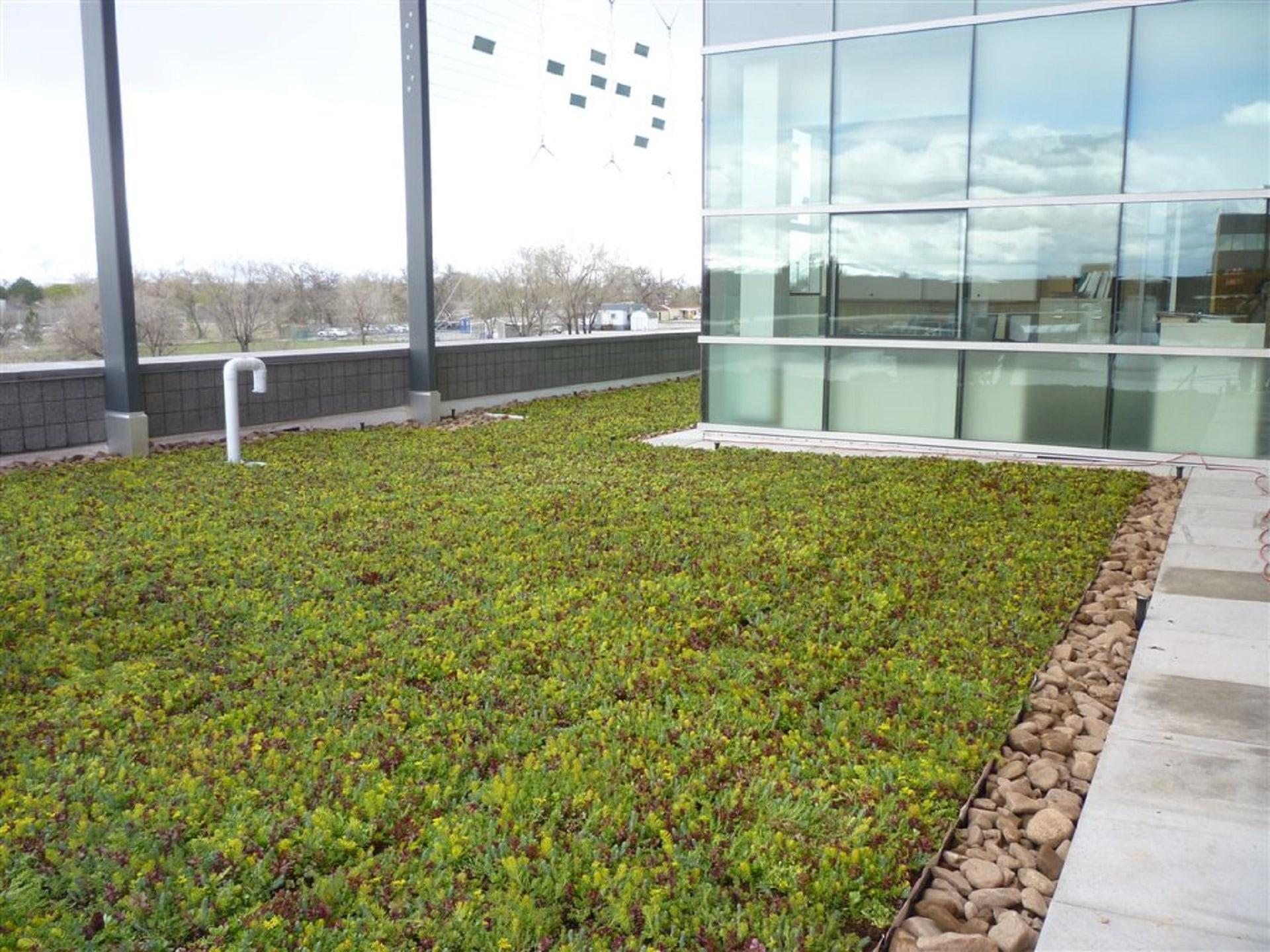 Esempio di giardino pensile estensivo esterno sul tetto for Arredo giardino carrefour 2017