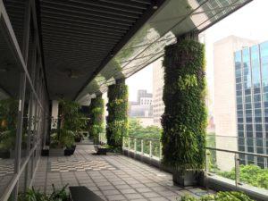 Giardino verticale esterno in parcheggio