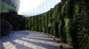 Giardino verticale esterno in centro direzionale
