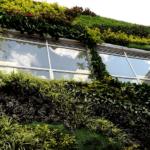 Giardino verticale esterno per condominio