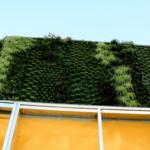 Giardino verticale esterno palazzo condominio