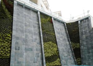 Giardino verticale esterno in giardino privato