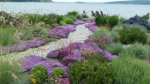 Giardino dei colori e dei profumi