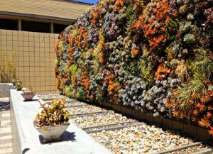 Giardino verticale esterno
