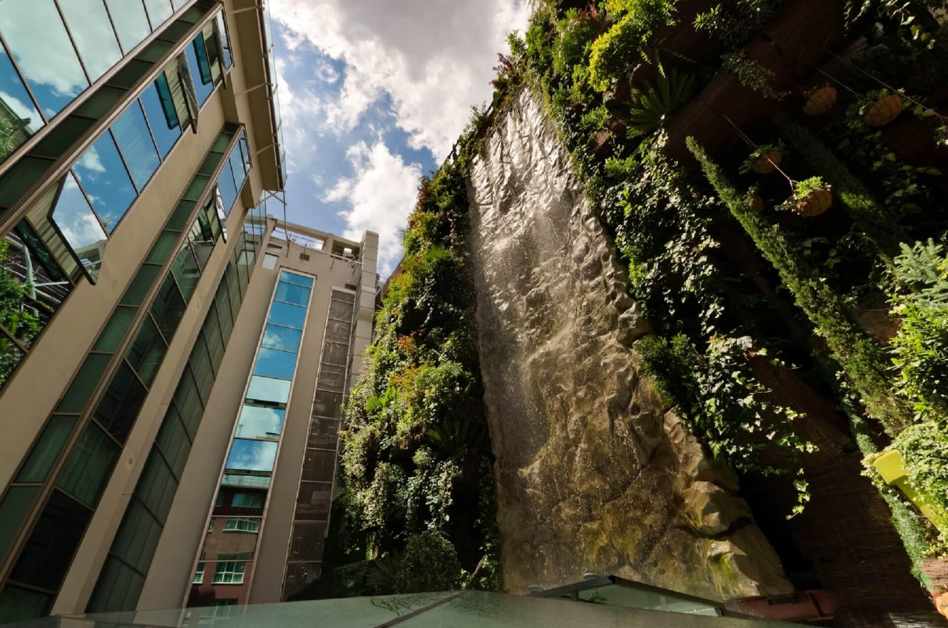 Pareti Verdi Verticali Costi giardini verticali: idee, costi, consigli per fare un