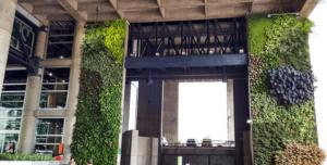 Giardino verticale esterno per struttura ricettiva