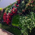 Giardino verticale per villa privata