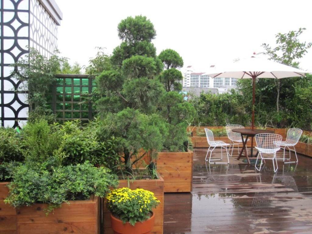 Giardini Pensili Cosa Sono Come Farli Idee E Costi