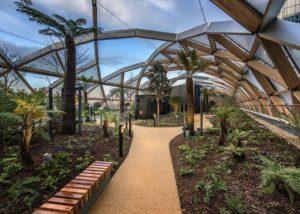 Giardino e verde per interni