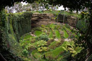 Cenotes verde