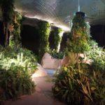 Vertical Jungle