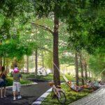 Tutto sulla progettazione del verde e paesaggistica