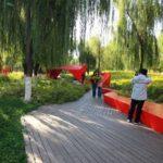 LP – Progettazione giardini