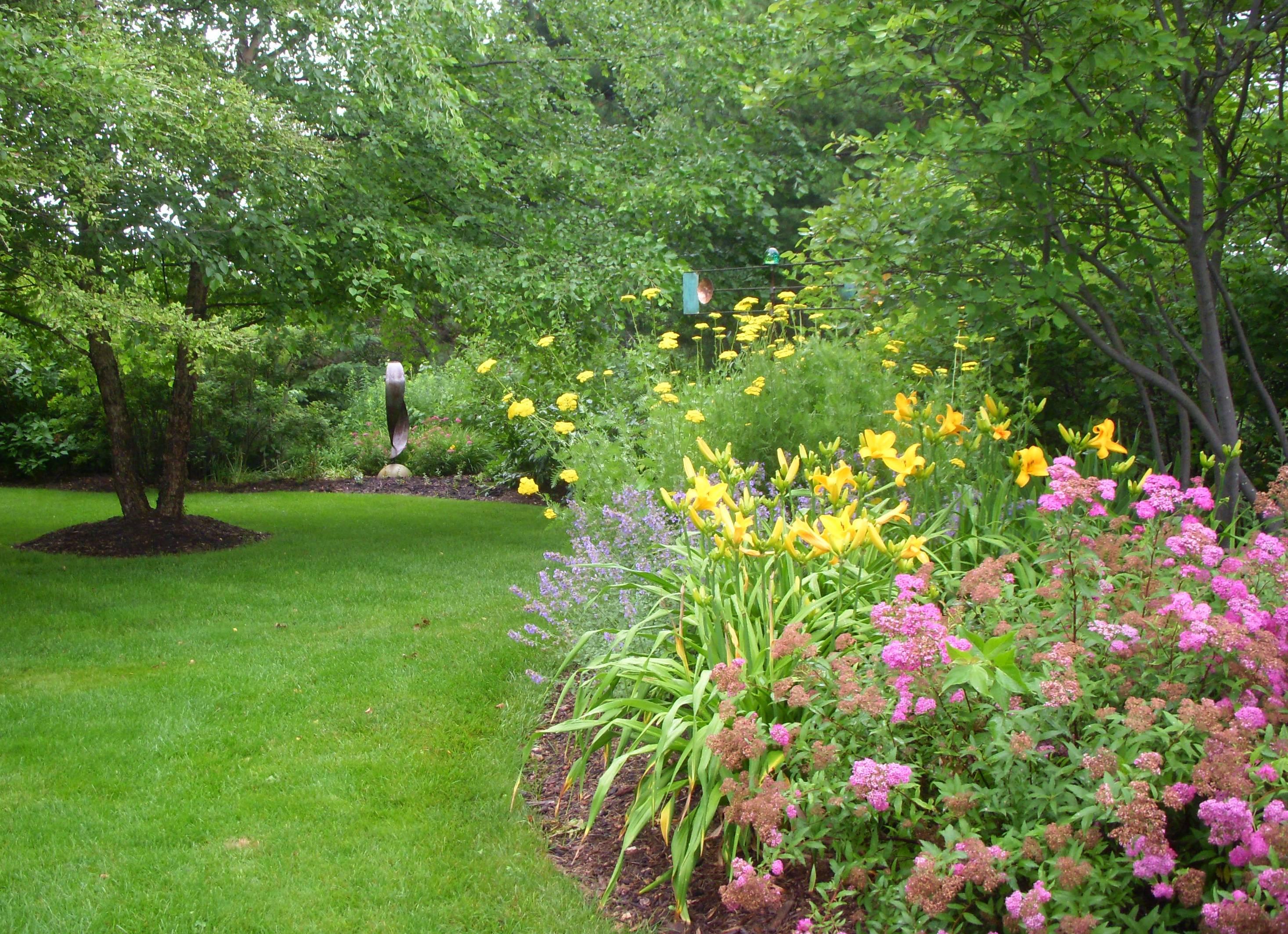 Piante Piccole Da Giardino quali piante scegliere per il proprio giardino verticale
