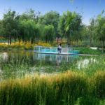 LP - Giardini pensili e Tetti Verdi: Costi e Preventivo