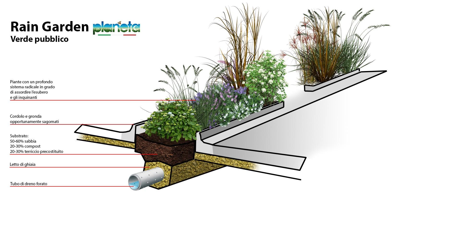 progettazione rain garden