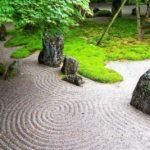 Piante Zen: quali piante utilizzare in un giardino Zen giapponese per meditazione